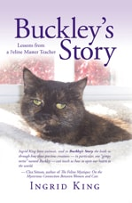 Buckley's Story: Lessons from a Feline Master Teacher
