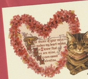 cat valentine card
