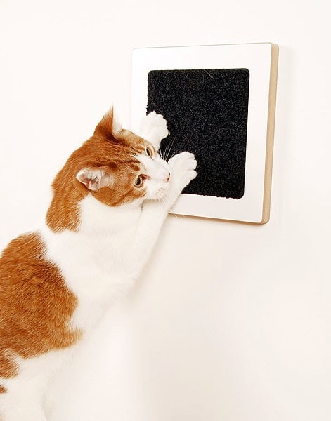 Catify your house cat products recommended by cat daddy jackson galaxy - Wall mounted cat scratcher ...