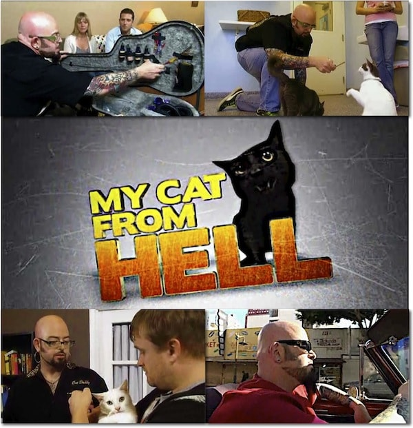 [Image: MyCatFromHellCollage.jpg]