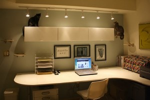 office_catification