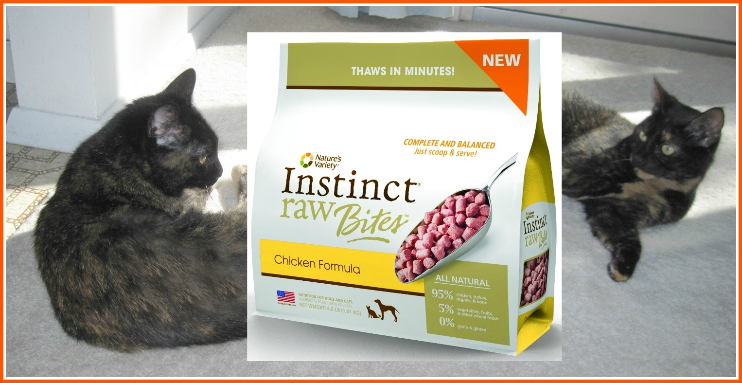 Instinct Cat Food Rabbit Review