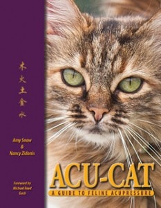 Acu_Cat_feline_acupuncture