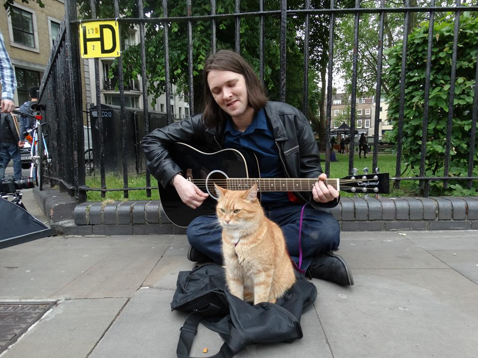 How Does A Street Cat Named Bob End