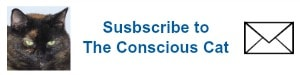 new subscribe button darker blue