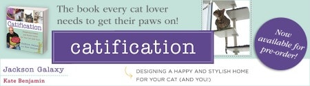 Kate's Catification ad