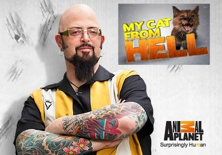 Animal planet casting couch casting now open for my cat for Jackson galaxy phone number