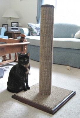 Best Cat Scratching Posts The Conscious Cat