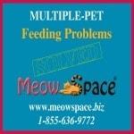 MeowSpace