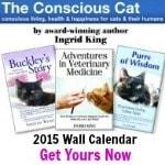 2015 calendar 150x150