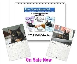 2015 calendar 300x250