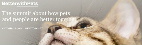 Better_With_Cats_2014