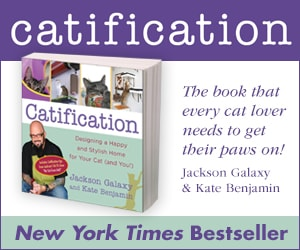 Catification bestseller 300x250