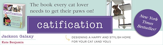 Catification bestseller banner