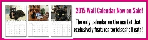2015 calendar pink border