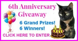 Allegra Anniversary giveaway with border