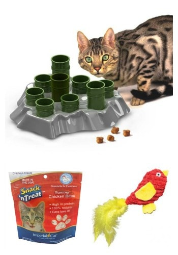 cat-toy-giveway