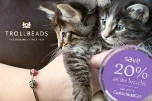 Conscious cat promo 300x200