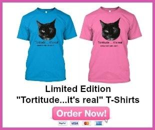 T-shirts 300x250