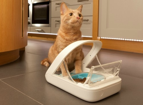 Surefeed Microchip Pet Feeder Solves Food Problems In