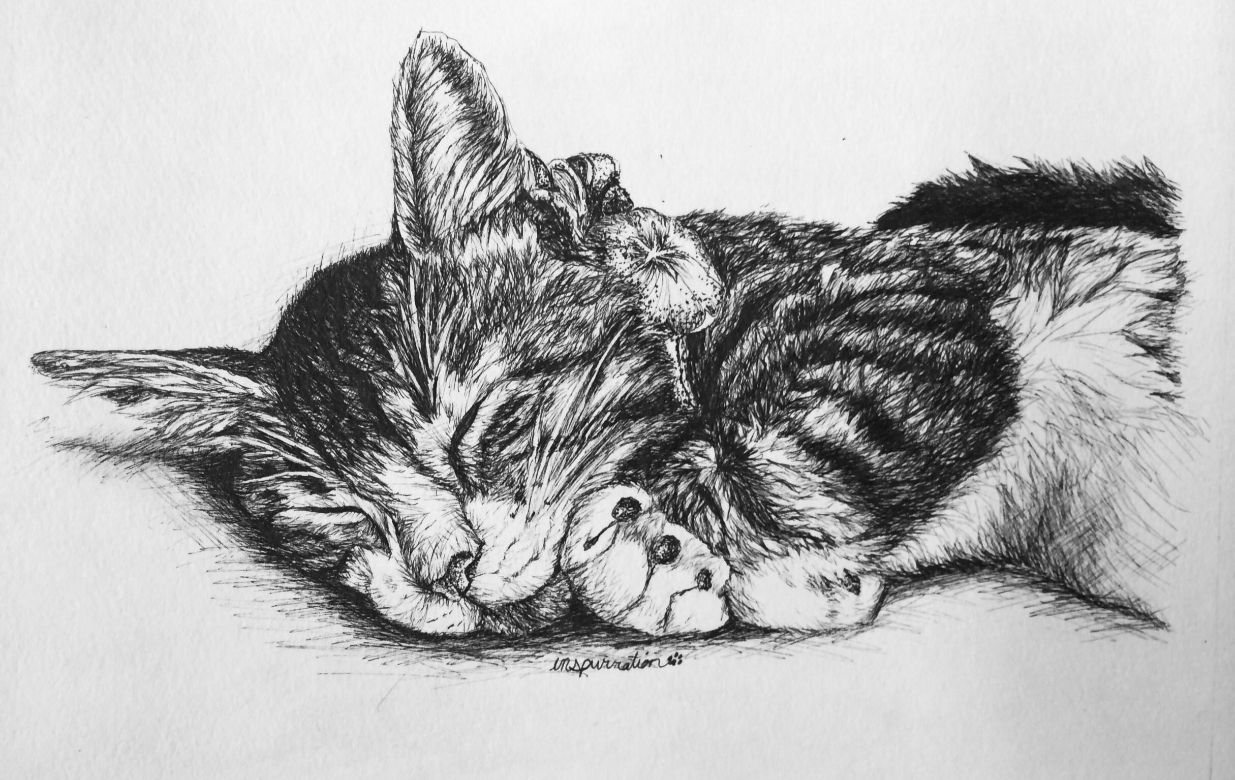 Cartoon Of Cat Getting Tattoo
