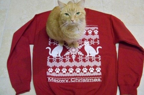 ugly-christmas-sweater-cat