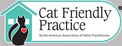 Cat_Friendly_Practice