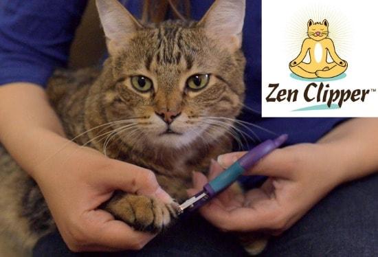 Review Zen Clipper Cat Nail Trimmer The Conscious Cat