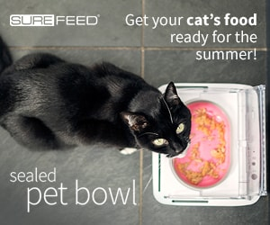 Conscious Cat Sealed Pet Bowl Banner Ad