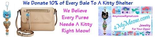 Conscious Cat Banner Ad