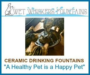 Wet Whiskers Fountains 300x250 ad with border