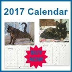 2017-calendar-150x150-with-border
