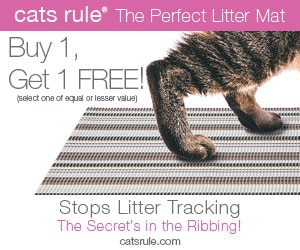 cats-rule-mat-ad_300x250-pixels