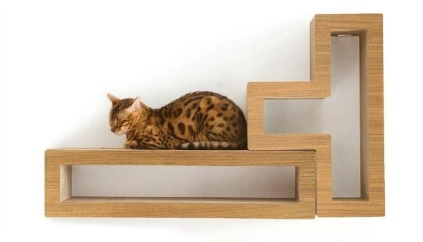 Katris Introduces Wall Mountable Modular Cat Shelves The