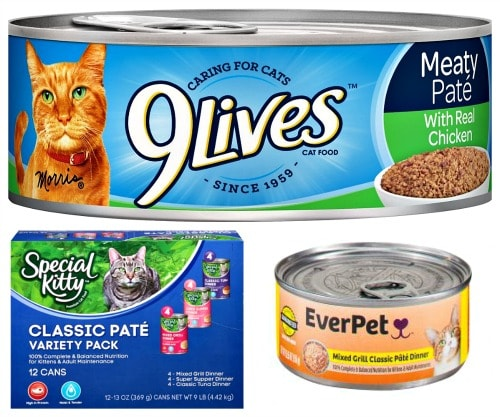 Advanced Nutrition Cat Food Review