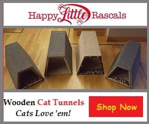 Happy Little Rascals3 300x250