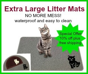 Litter mat 300x250 Version 2 with border
