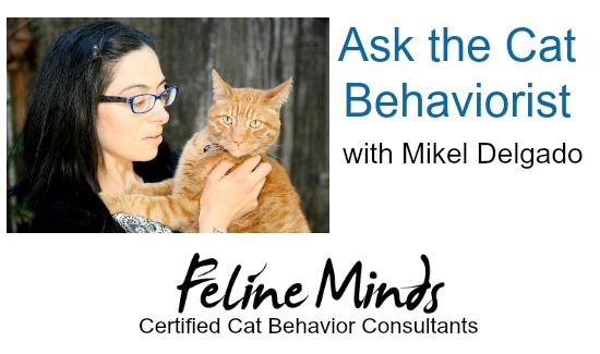Cat Behaviorist With Mikel Delgado
