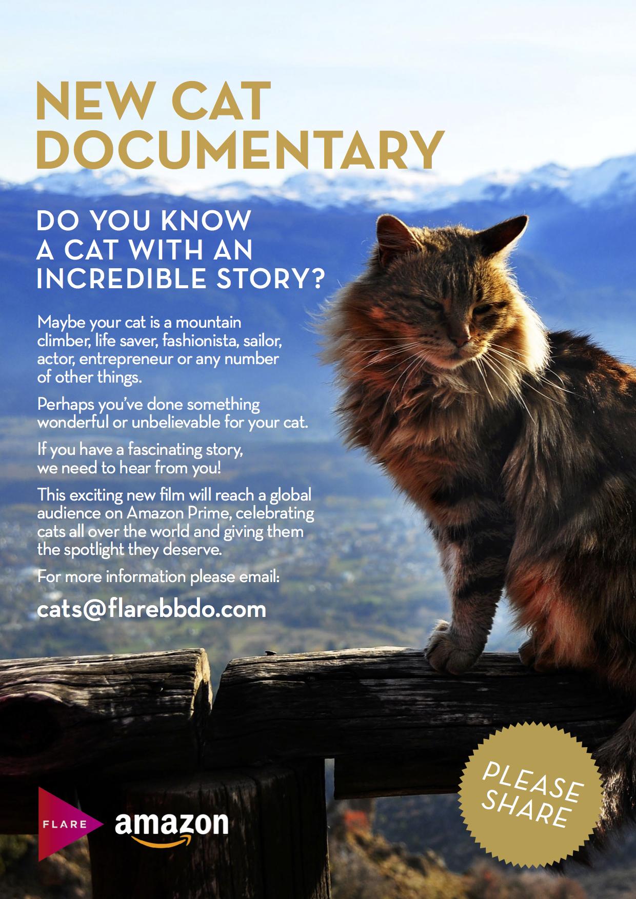 cat-documentary
