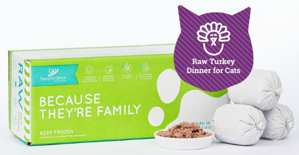 Commercially Available Raw Cat Food