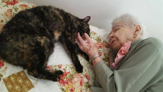 103-year-old-woman-tortie-cat