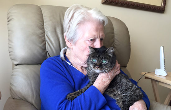 senior-cat-senior-adopter