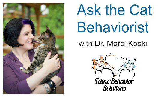 Ask-the-Cat-Behaviorist-Marci-Koski