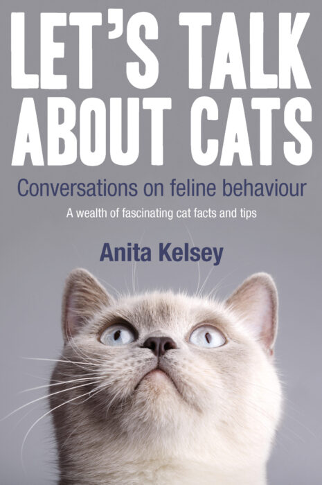 lets-talk-about-cats