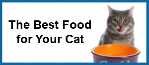 best food for your cat with border