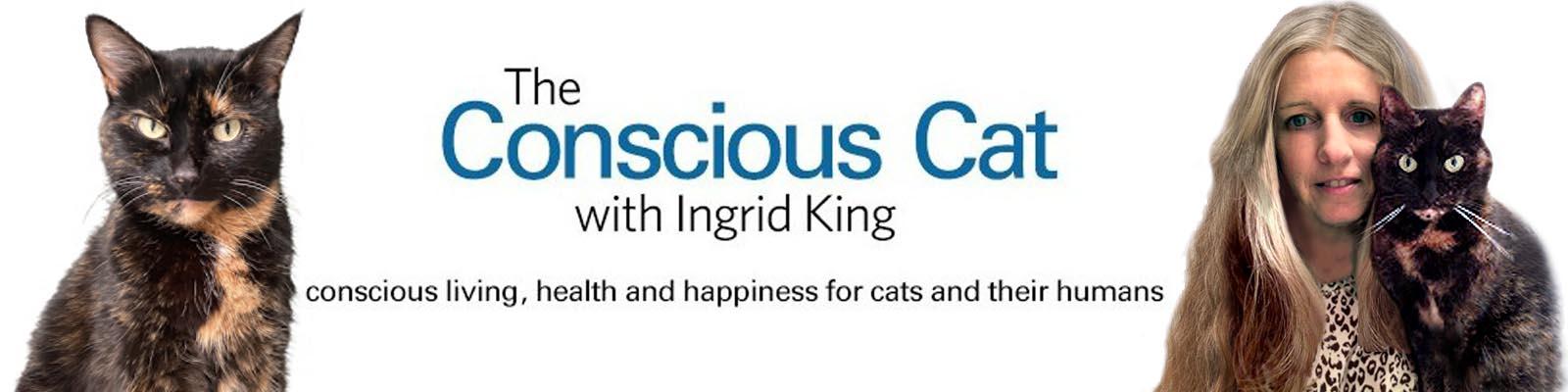 The Conscious Cat